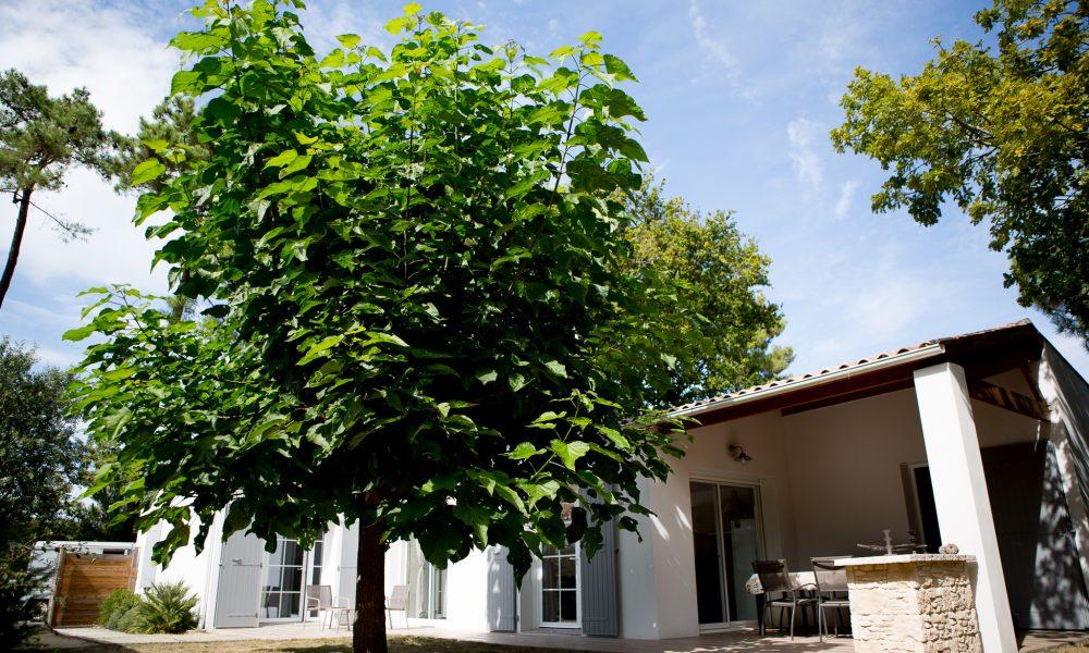 maison vert bois l'aigrette format internet-18